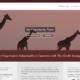 Giraffe Strategy - Small Business Website Content by Purple Gen
