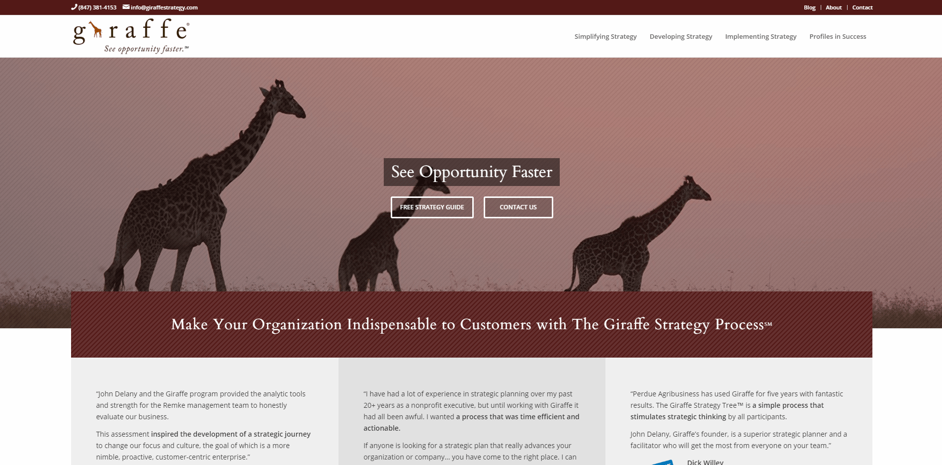 Giraffe Strategy - Small Business Website Content by Purple Gen